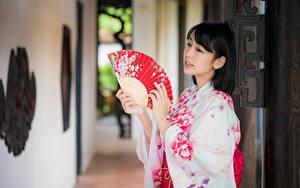 Bilder Asiatische Bokeh Kimono Hand Fächer Brünette junge Frauen