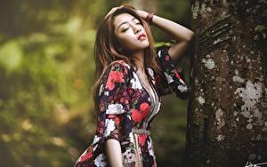 Hintergrundbilder Asiatisches Bokeh Posiert Braune Haare Kleid Hand Baumstamm