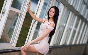 Fotos Asiaten Bokeh Pose Kleid junge Frauen