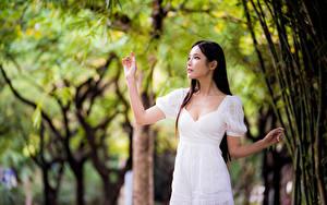 Hintergrundbilder Asiatische Unscharfer Hintergrund Posiert Kleid Hand Mädchens