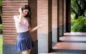 Fotos Asiaten Unscharfer Hintergrund Pose Rock Bluse Mädchens