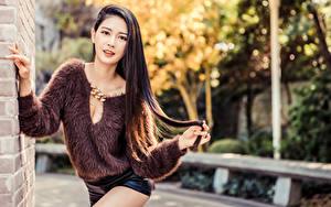 Bilder Asiatische Bokeh Posiert Sweatshirt Shorts Starren Mädchens
