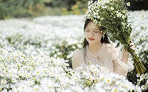 Fotos Asiaten Blumensträuße Kamillen Bokeh junge frau