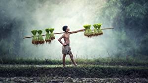 Fotos Asiatisches Jungen Nebel Pose Arbeitet kind