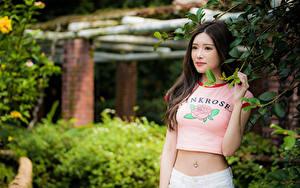 Tapety na pulpit Azjaci Gałęzie Brzuch Koszulce Spojrzenie Bokeh młoda kobieta