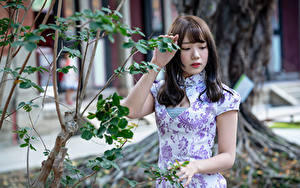 Fotos Asiatisches Ast Hand Kleid
