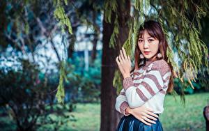 Hintergrundbilder Asiaten Ast Hand Starren junge Frauen