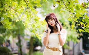 Fotos Asiaten Ast Pose Hand Blick Mädchens