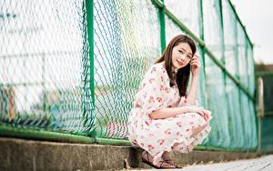 Hintergrundbilder Asiatische Braune Haare Kleid Zaun Sitzt Starren Mädchens