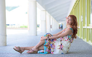 Fotos Asiaten Braune Haare Kleid Sitzt Hand Bein junge frau