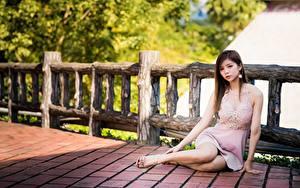 Bilder Asiaten Braune Haare Zaun Sitzend Kleid Hand Bein junge Frauen