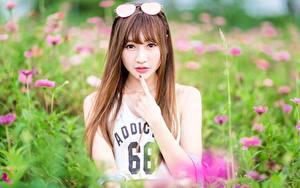 Bilder Asiaten Braune Haare Starren Brille Hand Unscharfer Hintergrund junge Frauen