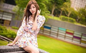 Bilder Asiaten Braune Haare Starren Hand Kleid Sitzt
