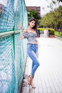 Fotos Asiatische Braunhaarige Posiert Zaun Jeans Bluse Starren Mädchens