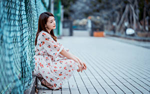 Hintergrundbilder Asiatisches Braune Haare Sitzen Kleid Bokeh Zaun junge frau
