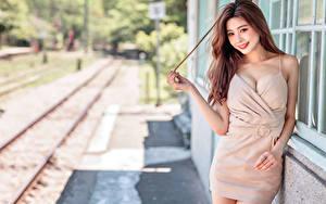 Hintergrundbilder Asiaten Braune Haare Lächeln Kleid Unscharfer Hintergrund Starren