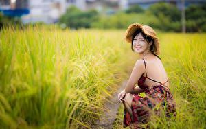 Fotos Asiaten Brünette Kleid Der Hut Sitzt Bokeh Blick Gras Mädchens