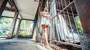 Photo Asian Brunette girl Fence Frock Hands Legs Stilettos Girls