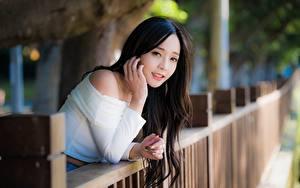 Bilder Asiatische Brünette Starren Hand Unscharfer Hintergrund Zaun junge Frauen