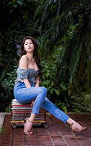 Hintergrundbilder Asiatisches Brünette Sitzend Koffer Bein Jeans Bluse Mädchens