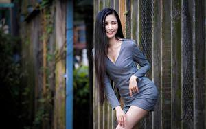 Fotos Asiatische Brünette Lächeln Pose Kleid Blick junge frau