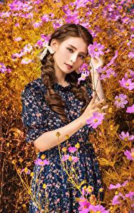 Fotos Asiatische Kosmeen Kleid Starren Braunhaarige junge frau