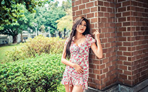 Picture Asian Gown Bokeh Girls