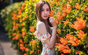 Hintergrundbilder Asiaten Kleid Hand Bokeh Blick junge frau
