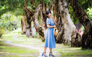 Hintergrundbilder Asiaten Kleid Der Hut Blick Bokeh