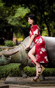 Hintergrundbilder Asiatische Kleid Bein Lächeln junge Frauen