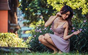 Hintergrundbilder Asiaten Kleid Pose Sitzen Bokeh junge Frauen