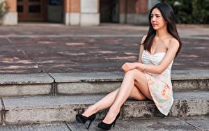 Bilder Asiaten Kleid Sitzt Bein Stöckelschuh Blick junge frau