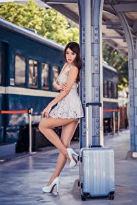 Fotos Asiaten Kleid Koffer Bein High Heels Schön Mädchens