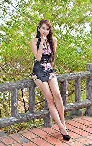 Hintergrundbilder Asiatische Zaun Bein Kleid Blick Braunhaarige Mädchens