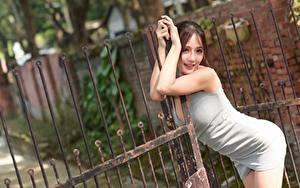 Bilder Asiatisches Zaun Posiert Kleid Braunhaarige Pforte Mädchens