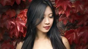 Hintergrundbilder Asiaten Blattwerk Brünette Haar junge Frauen