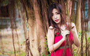 Bilder Asiatische Blick Hand Braune Haare junge frau