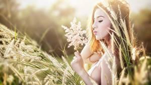 Hintergrundbilder Asiaten Gras Ähren Braune Haare Hand Mädchens