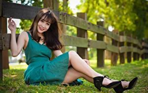 Fotos Asiaten Gras Zaun Braunhaarige Kleid Sitzend Lächeln Bein Stöckelschuh Mädchens