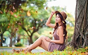 Bilder Asiatische Gras Der Hut Sitzend Unscharfer Hintergrund Seitlich Kleid Hand Bein junge frau