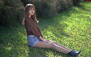 Fotos Asiatische Gras Sitzen Bein Shorts Sweatshirt Blick junge Frauen