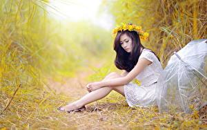 Hintergrundbilder Asiatische Gras Sitzend Kranz Regenschirm Brünette Hand Bein Seitlich Mädchens