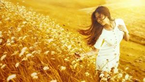 Hintergrundbilder Asiatische Grünland Braunhaarige Kleid Gras Hand Mädchens