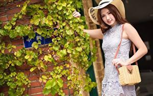 Bilder Asiatisches Handtasche Bokeh Der Hut Lächeln Kleid Hand Braunhaarige junge Frauen