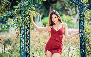 Bilder Asiaten Posiert Kleid Starren junge frau