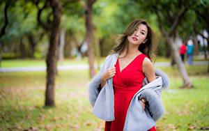 Fotos Asiaten Posiert Kleid Starren Unscharfer Hintergrund junge frau