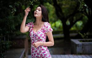 Fotos Asiatische Posiert Kleid Hand Ast Mädchens