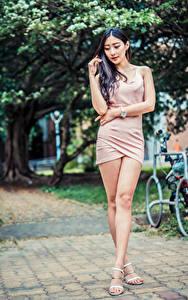 Bilder Asiaten Pose Kleid Bein junge frau