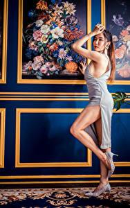 Fotos Asiatische Posiert Kleid Bein Starren