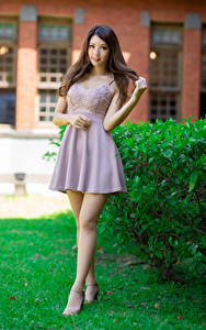 Fotos Asiaten Pose Kleid Bein Starren Braunhaarige junge frau
